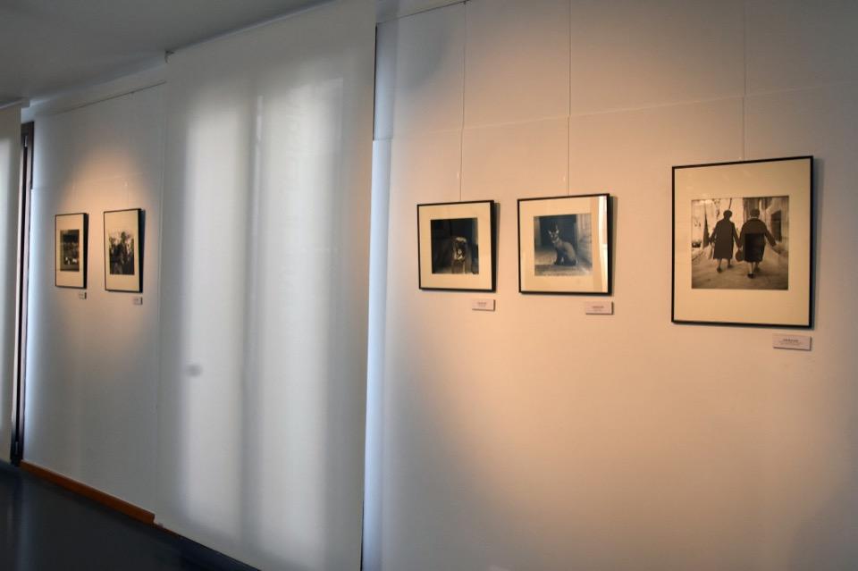 DSC_4569-Ojos Rojos. Festival fotografía española y latinoamericana